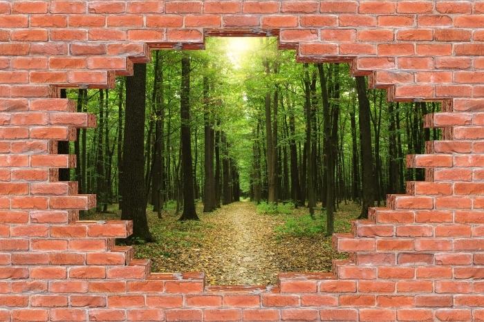 Fototapeta winylowa Dziura w murze - Las w słońcu - Dziury w ścianie