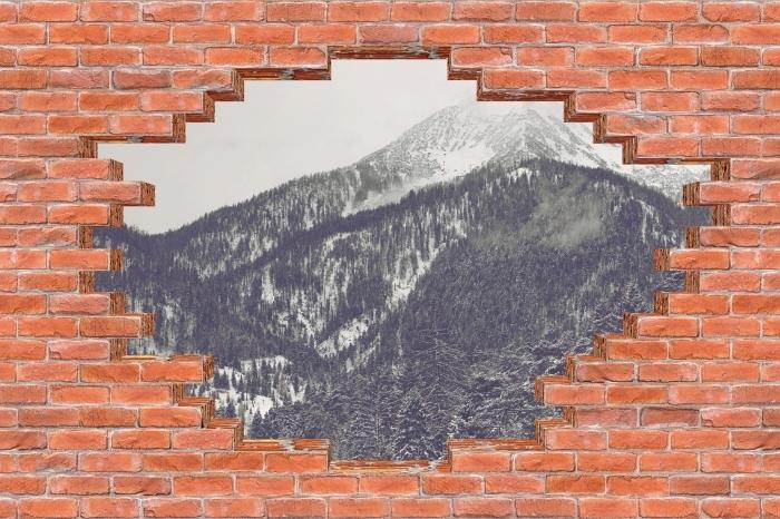Fotomural Estándar Agujero en la pared - nubes - Agujeros en la pared