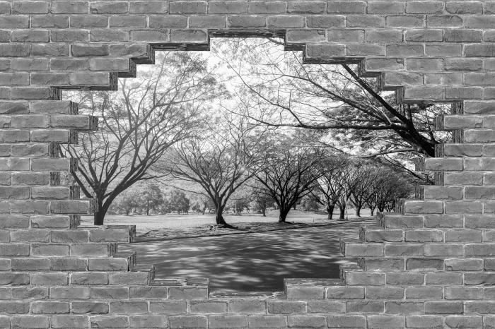 Fototapeta winylowa Dziura w murze - Aleja. - Dziury w ścianie