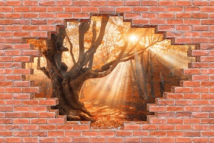 Fototapeta winylowa Dziura w murze - Drzewa i promienie słoneczne - Dziury w ścianie