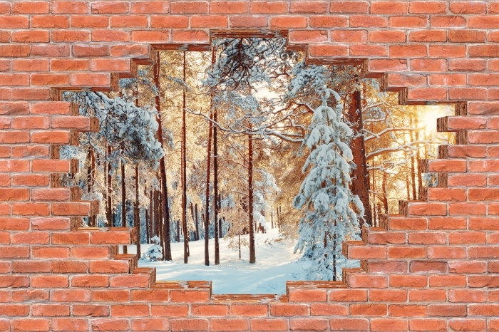 Hole in the wall - Pine trees covered with snow Vinyl Wall Mural - Holes in the wall
