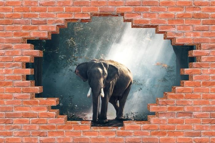 Fototapeta winylowa Dziura w murze - Słoń w lesie - Dziury w ścianie
