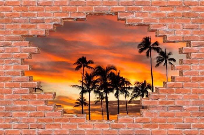 Fototapeta winylowa Dziura w murze - Hawaje - Dziury w ścianie