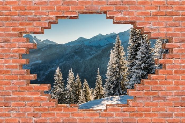 Fototapeta winylowa Dziura w murze - Tatry - Dziury w ścianie