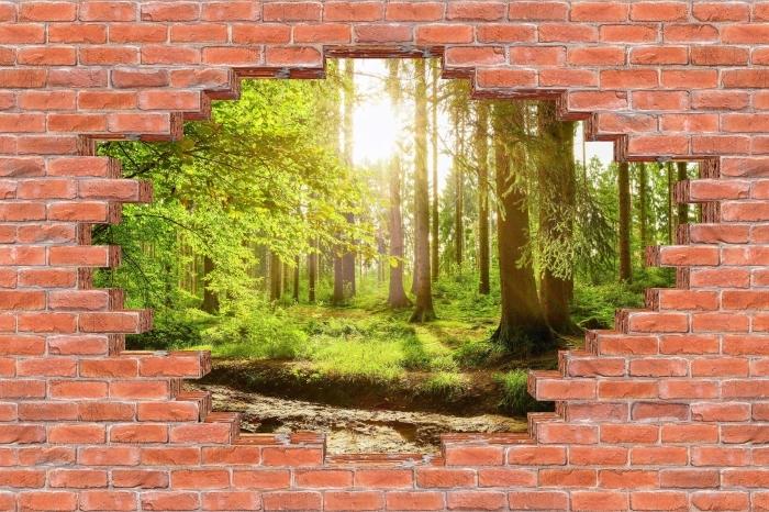 Carta da Parati in Vinile Buco nel muro - Foresta - Buchi nel muro
