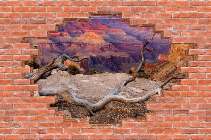 Fototapeta winylowa Dziura w murze - Grand Canyon - Dziury w ścianie