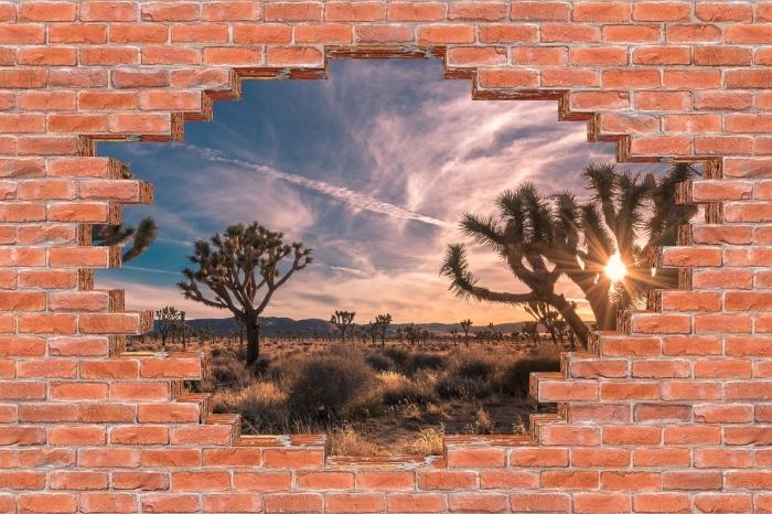 Fototapeta winylowa Dziura w murze - Zachód słońca. Pustynia. Kalifornia. - Dziury w ścianie