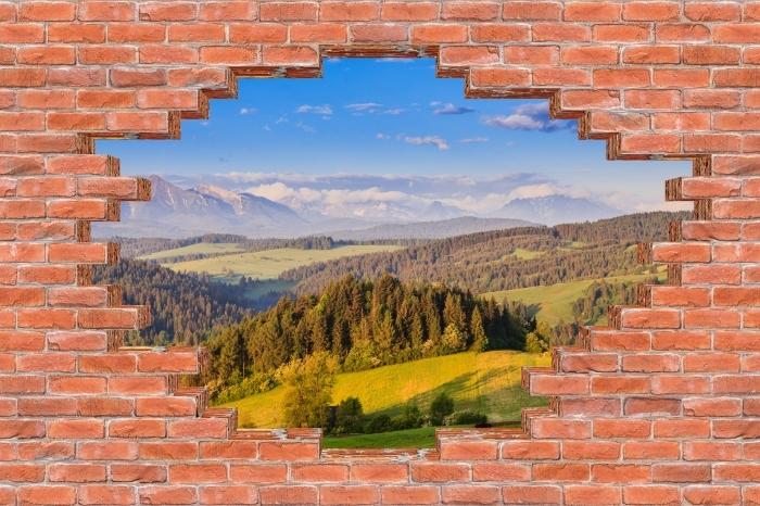 Fototapeta winylowa Dziura w murze - Pieniny. Polska. - Dziury w ścianie