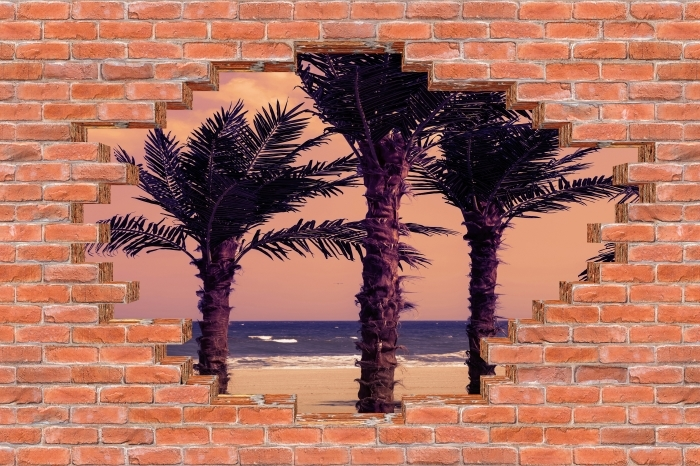 Fotomural Estándar Agujero en la pared - Palma - Agujeros en la pared