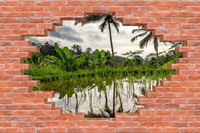 Fototapeta winylowa Dziura w murze - Palmy. Indonezja. - Dziury w ścianie