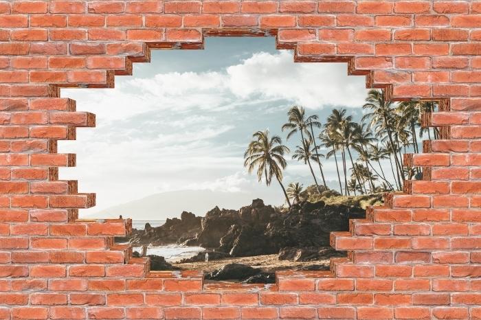 Fototapeta winylowa Dziura w murze - Palmy. Hawaje. - Dziury w ścianie