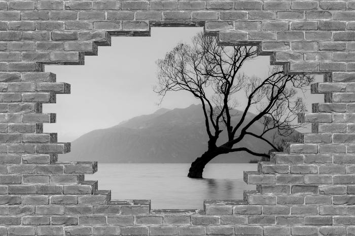 Fototapeta winylowa Dziura w murze - Krajobraz. Nowa Zelandia - Dziury w ścianie