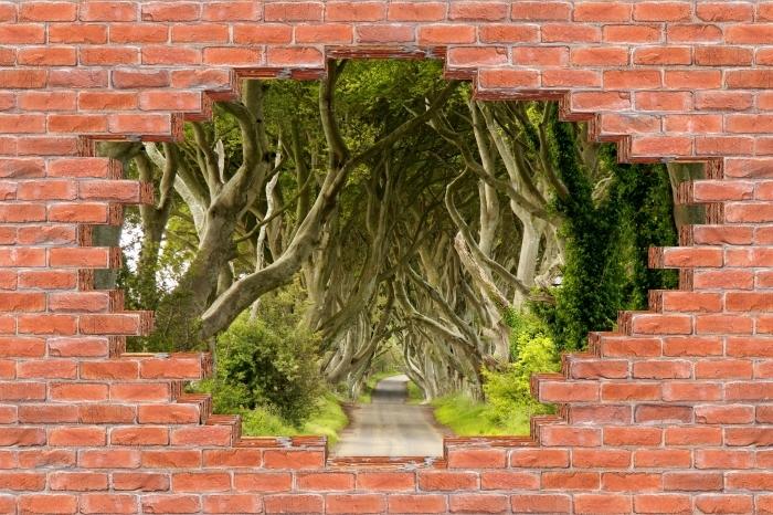 Fototapeta winylowa Dziura w murze - Allee - Dziury w ścianie