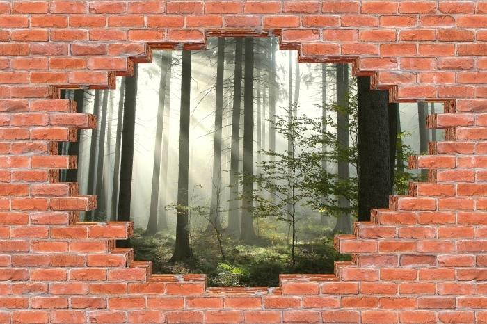 Fototapeta winylowa Dziura w murze - Las iglasty w mglisty dzień jesieni - Dziury w ścianie