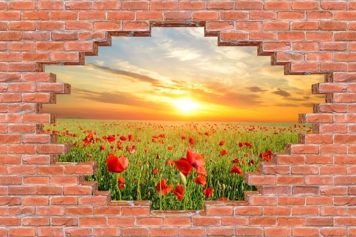 Fototapeta winylowa Dziura w murze - Pole maku - Dziury w ścianie