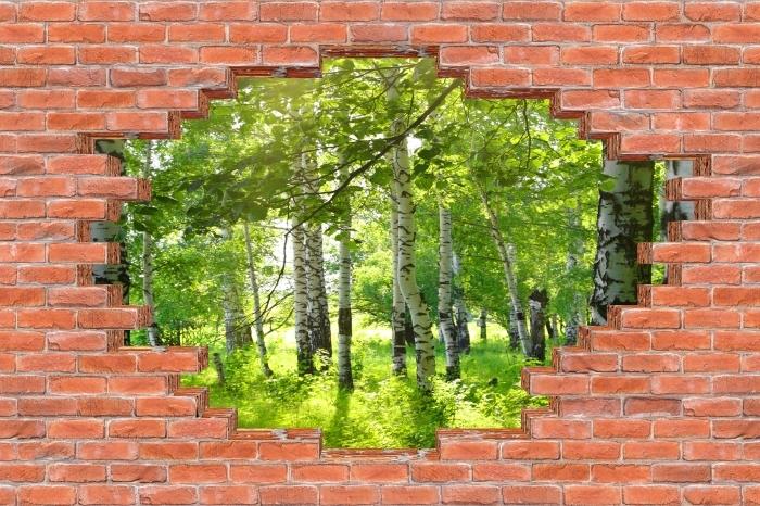 Fototapeta winylowa Dziura w murze - Lato. Brzozowe lasy. - Dziury w ścianie