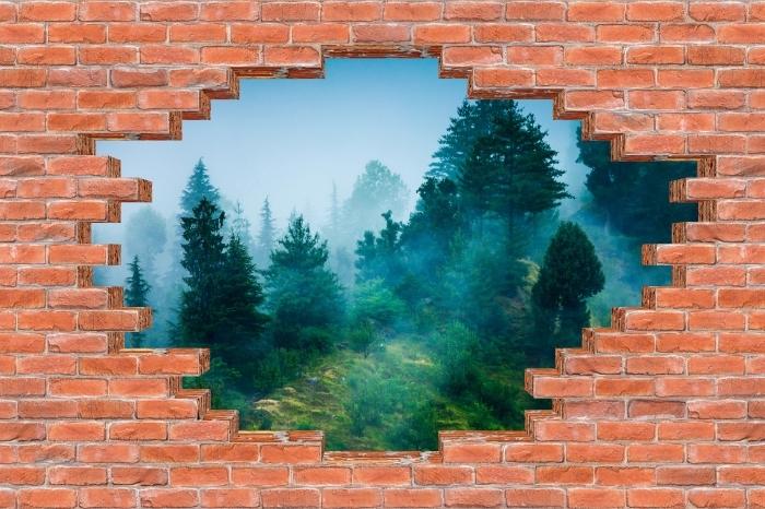 Fototapeta winylowa Dziura w murze - Mgła - Dziury w ścianie