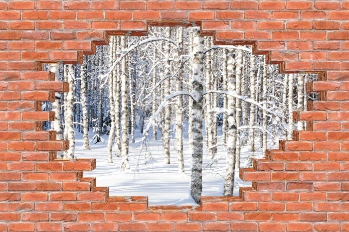 Fototapeta winylowa Dziura w murze - Śnieżne brzozy - Dziury w ścianie