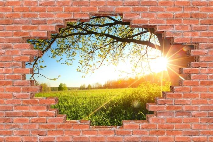 Fototapeta winylowa Dziura w murze - Drzewo - Dziury w ścianie