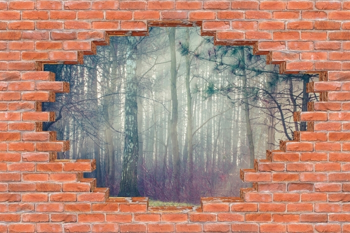 Fototapeta winylowa Dziura w murze - Las we mgle - Dziury w ścianie