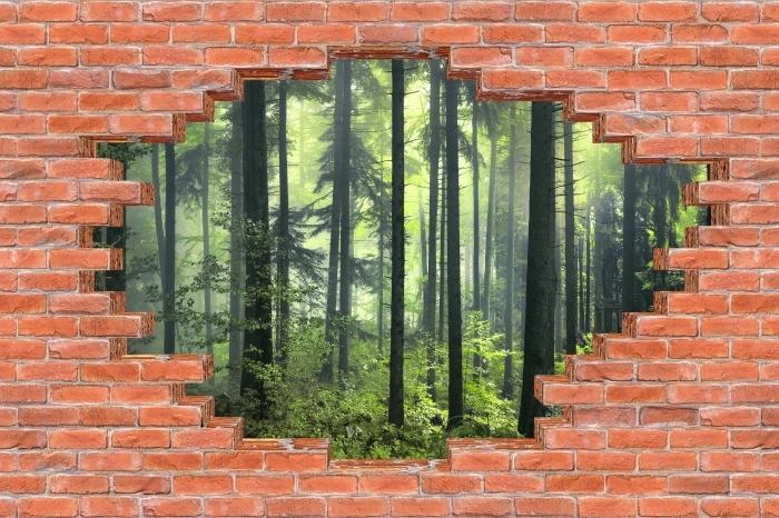 Fototapeta winylowa Dziura w murze - Tajemniczy ciemny las - Dziury w ścianie