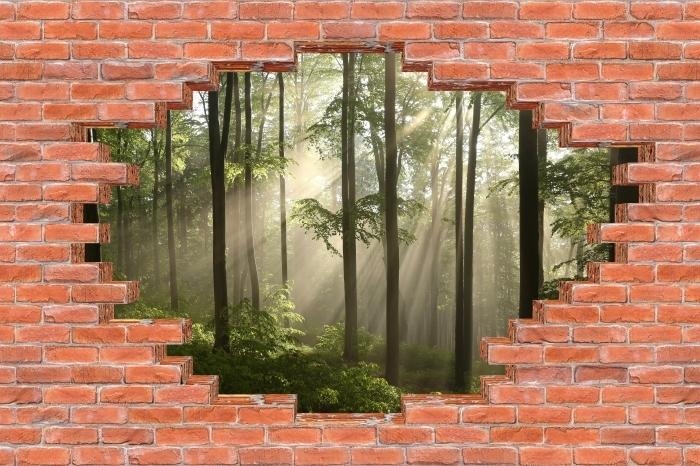 Vinyl-Fototapete Loch in der Wand - Nebel am frühen Morgen in Wald - Durchbruch in der Wand