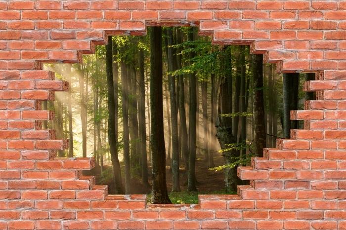 Papier peint vinyle Trou dans le mur - Automne - Les trous dans le mur
