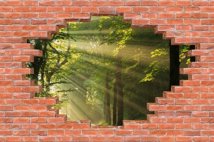 Vinyl-Fototapete Loch in der Wand - Strahlen der Sonne im Wald - Durchbruch in der Wand
