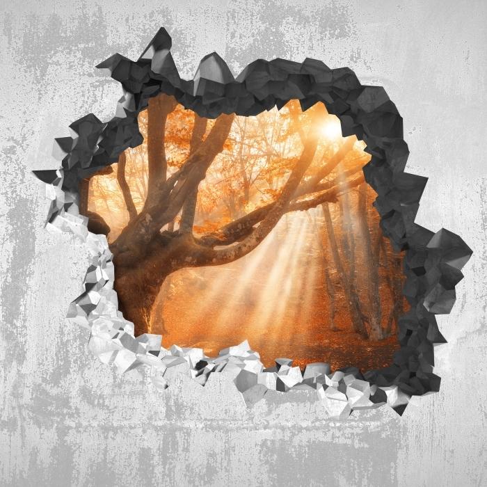 Vinyl-Fototapete Loch in der Wand - Bäume und Sonnenlicht - Durchbruch in der Wand