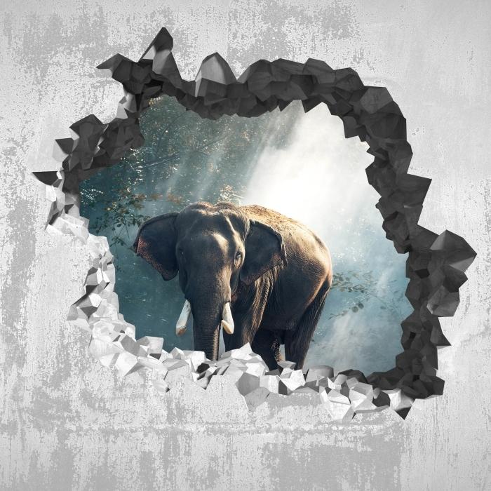 Fototapeta winylowa Dziura w ścianie - Słoń w lesie - Dziury w ścianie