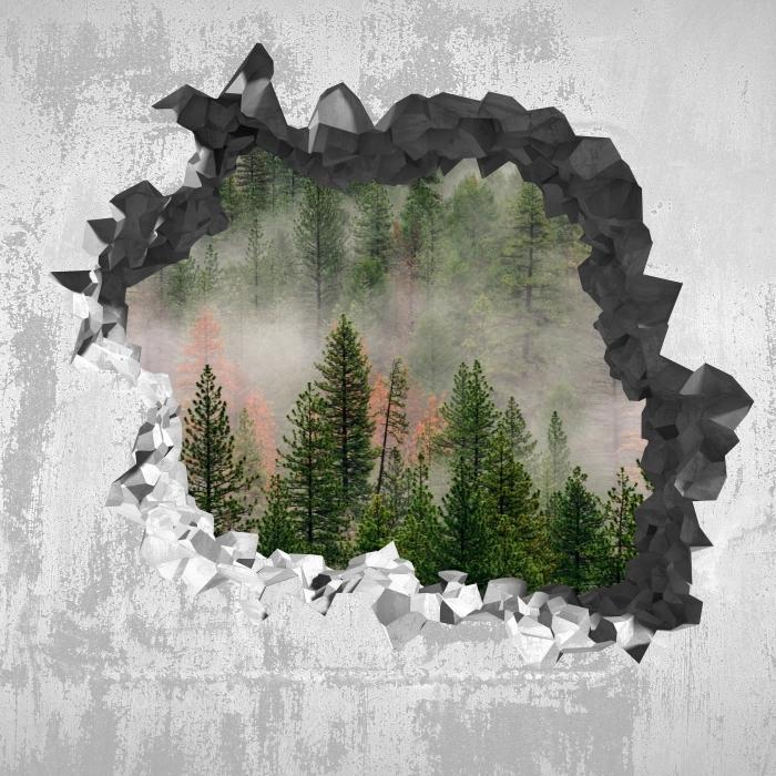Vinyl Fotobehang Gat in de muur - Bos in de mist - Gaten in de muur