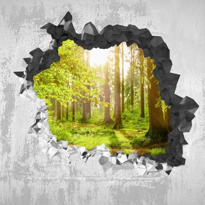 Fototapeta winylowa Dziura w ścianie - Las - Dziury w ścianie