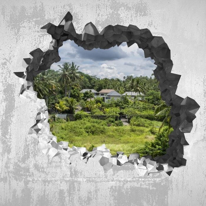Papier peint vinyle Trou dans le mur - Rice Field - Les trous dans le mur