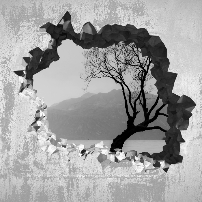 Hole in the wall - Landscape. New Zealand Vinyl Wall Mural - Holes in the wall