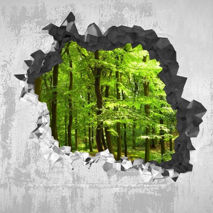 Fototapeta winylowa Dziura w ścianie - Las bukowy latem - Dziury w ścianie