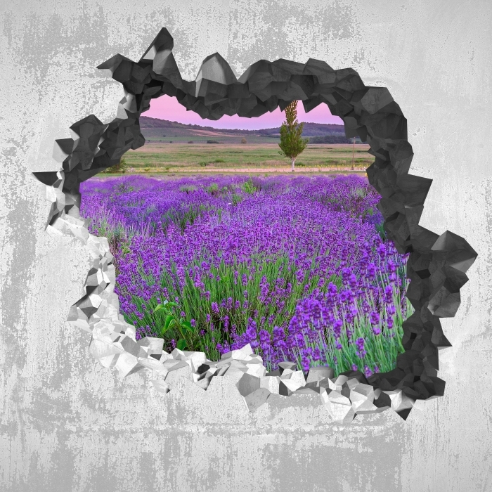 Fototapeta winylowa Dziura w ścianie - Zachód słońca. Węgry. - Dziury w ścianie