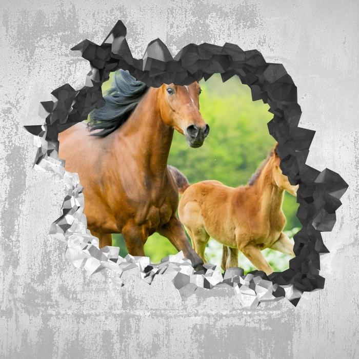 Fototapeta winylowa Dziura w ścianie - Konie w galopie - Dziury w ścianie