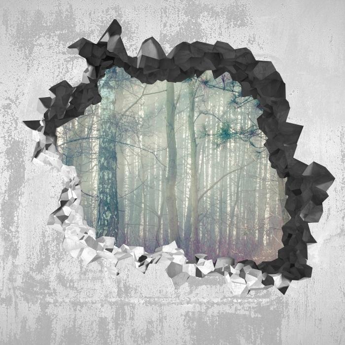 Vinyl-Fototapete Loch in der Wand - Wald im Nebel - Durchbruch in der Wand