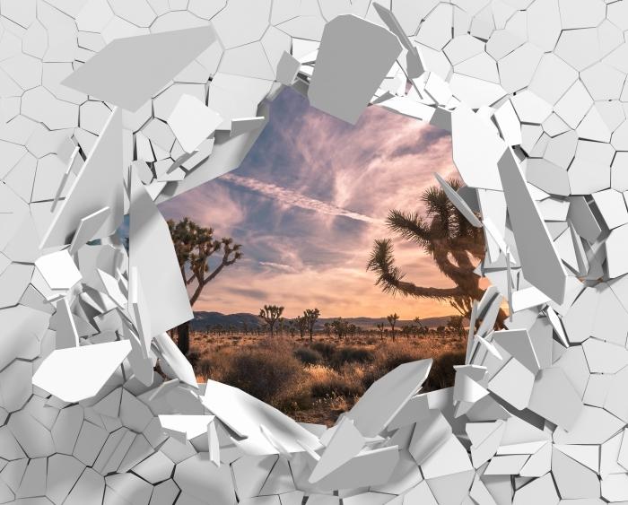 Papier peint vinyle Trou dans le mur - Coucher de soleil. Désert. Californie. - Les trous dans le mur