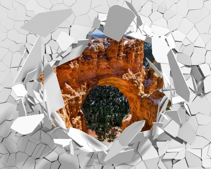 Papier peint vinyle Trou dans le mur - Canyon - Les trous dans le mur