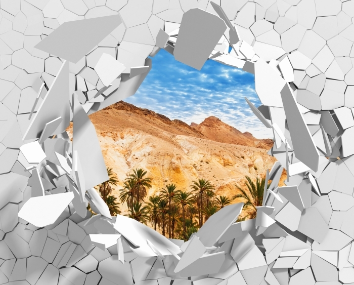 Hole in the wall - Mountain oasis Vinyl Wall Mural - Holes in the wall