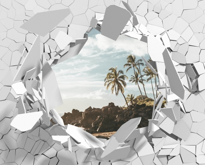Vinyl-Fototapete Loch in der Wand - Palma. Hawaii. - Durchbruch in der Wand