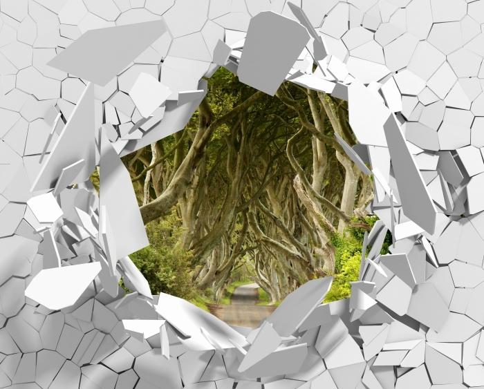 Fototapeta winylowa Dziura w ścianie - Allee - Dziury w ścianie