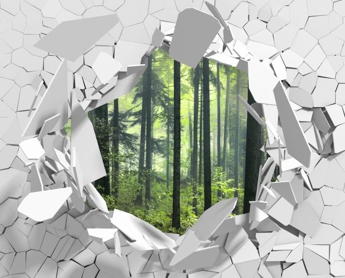 Fototapeta winylowa Dziura w ścianie - Tajemniczy ciemny las - Dziury w ścianie