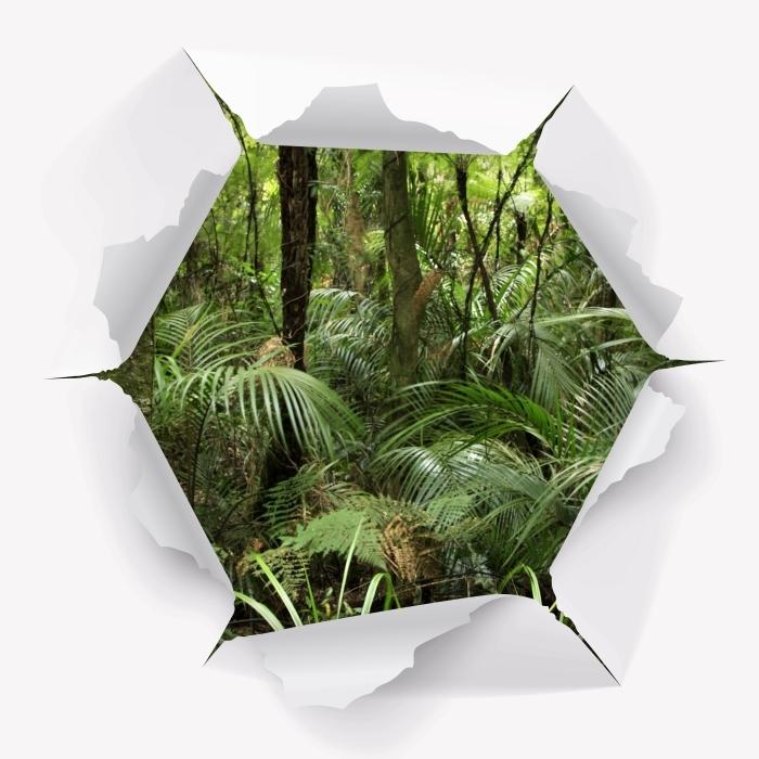 Fototapeta winylowa Dziura w ścianie - Tropikalny las - Dziury w ścianie