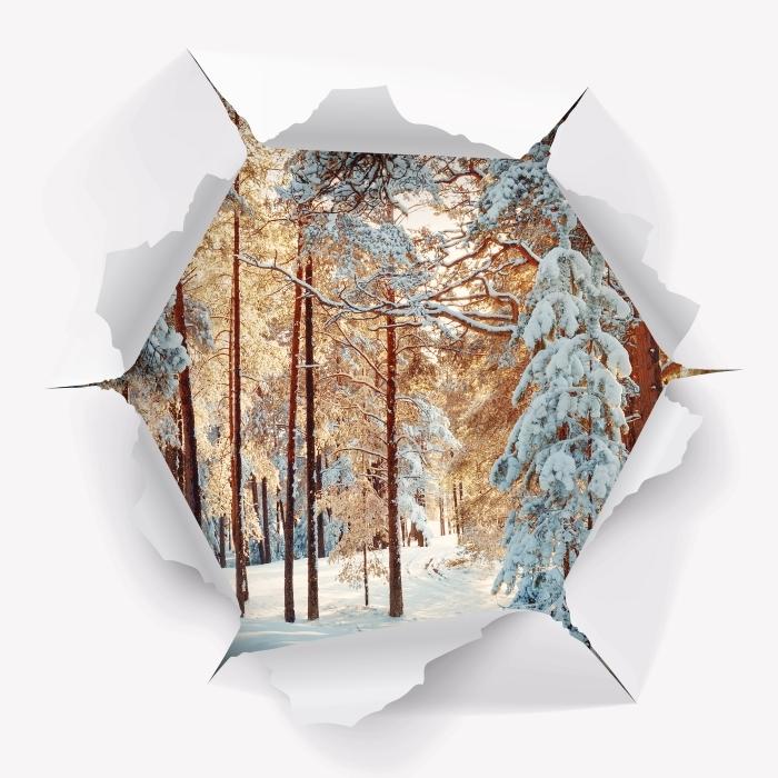 Vinyl Fotobehang Gat in de muur - Pine bomen bedekt met sneeuw - Gaten in de muur