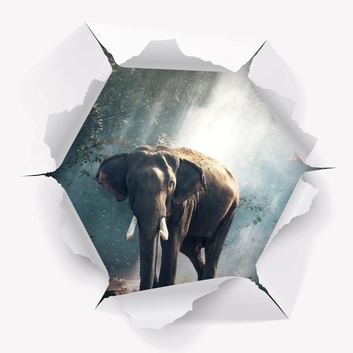 Fotomural Estándar Agujero en la pared - elefante en el bosque - Agujeros en la pared