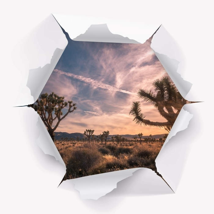 Hole in the wall - Sunset. Desert. California. Vinyl Wall Mural - Holes in the wall