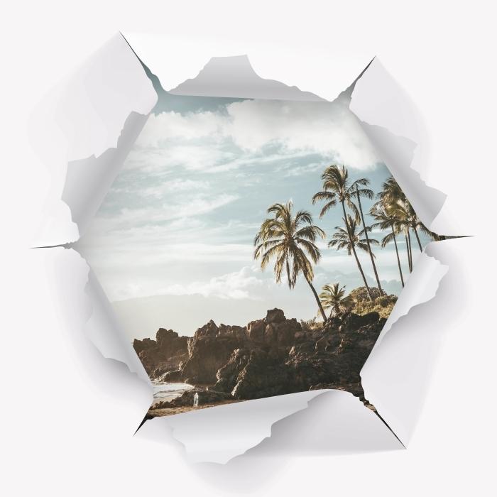 Fototapeta winylowa Dziura w ścianie - Palmy. Hawaje. - Dziury w ścianie