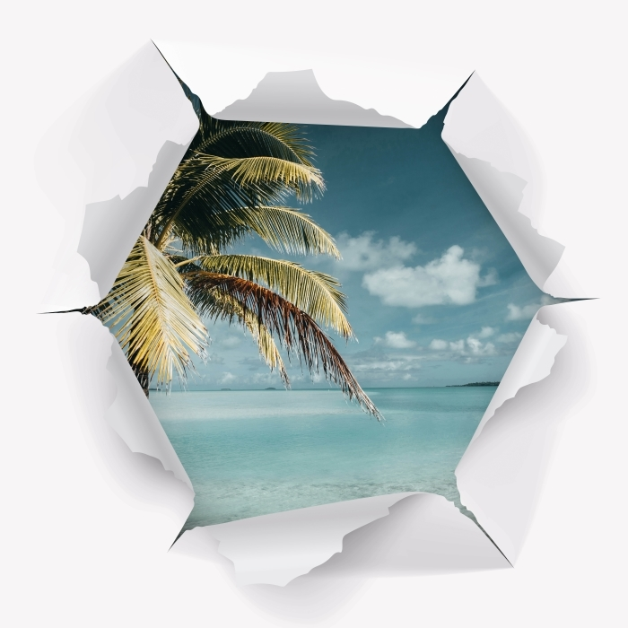 Fototapeta winylowa Dziura w ścianie - gotować drzewo Palm Island - Dziury w ścianie